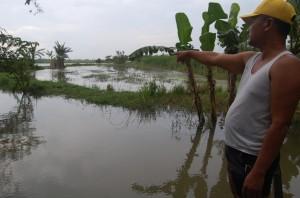 PASKA DITANGANI-Seorang warga menunjuk lokasi pipa Lapindo yang bocor, di Dusun Bendungan RT 5/RW 2 Desa Pesawahan Kecamatan Porong, Jum'at (4/1) sore.